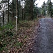 Kirchwaldstrasse (2)